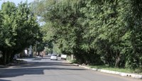 Comissão de Meio Ambiente reivindica poda de árvores na avenida Alcântara