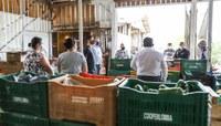 Comissões defendem inclusão de produtos da agricultura familiar em cestas distribuídas pela Smed