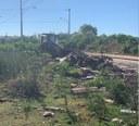 27/02/2019 - Fernando Lourenço monitora ação de limpeza e retirada de entulhos na Vila Kipling