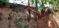 29/06/2020 - Nor Boeno solicita retirada de raízes de árvores do muro da escola Cecília Meireles