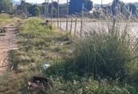 31/03/2020 - Vereador Nor Boeno encaminha pedido de capina e roçada no bairro Canudos