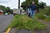 31/10/2018 - Vereador Nor Boeno solicita limpeza em parada de ônibus no bairro Liberdade